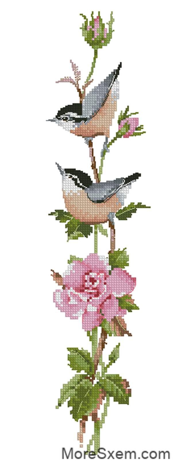 Сонатина в розовом