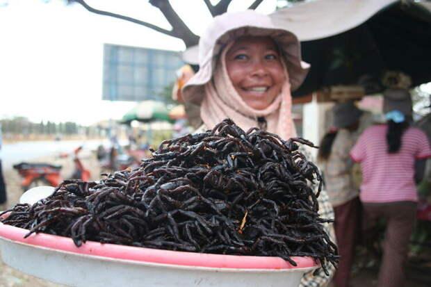 Жареные пауки-птицееды считаются деликатесом в Камбодже