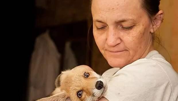 Лисенка из Подольска забрали в центр реабилитации диких животных в Калуге