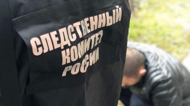 СК РФ сообщил об обнаружении захоронений жертв нацистов в Новгородской области