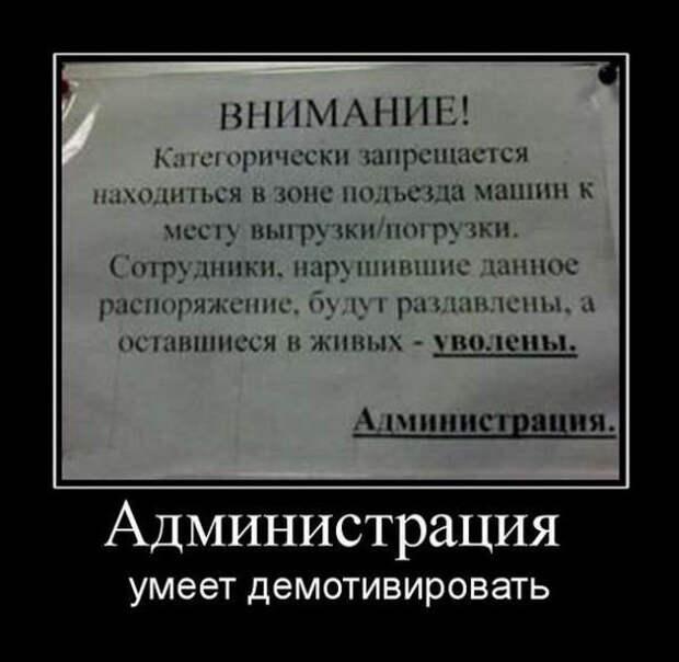 5402287_1613462536_demy11 (594x579, 56Kb)
