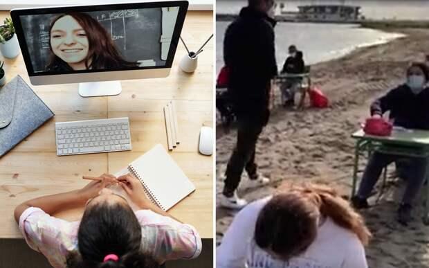 Уроки мечты: школьники сменили онлайн-обучение на свежий воздух и пляж