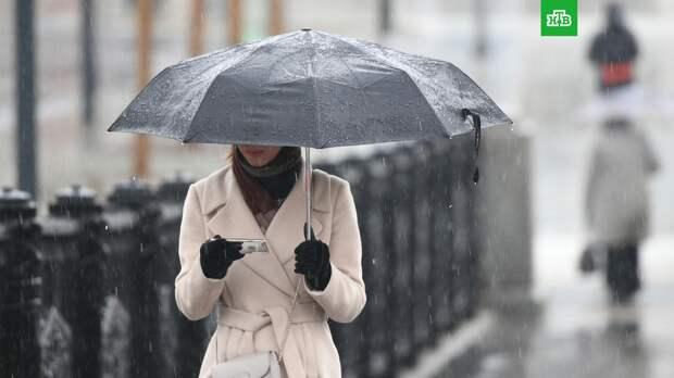Москвичей ждет дождливая и ветреная погода