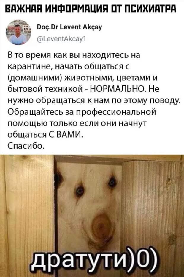 Смешные комментарии. Подборка chert-poberi-kom-chert-poberi-kom-39030703092020-1 картинка chert-poberi-kom-39030703092020-1