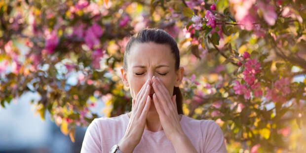 Найдена связь между аллергией и паническими атаками