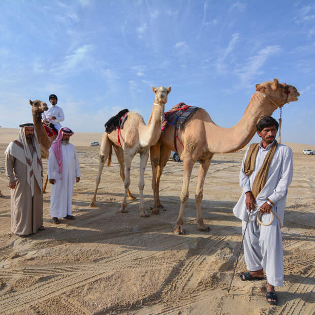 Активный отдых в Катаре: по пустыне на сноуборде и другая экзотика