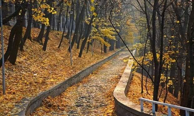 Сухо и прохладно: прогноз погоды в Украине на неделю