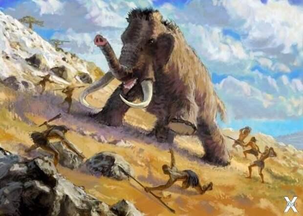 Мамонты могли жить 400 лет назад. Факты, противоречащие официальной истории