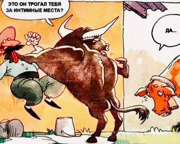 Где бы коровка не прыгала, телёнок всё равно наш!