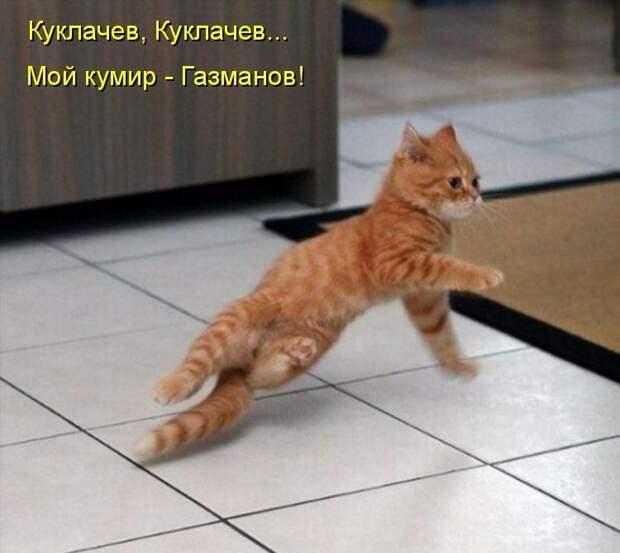 1450431510_kotomatrica