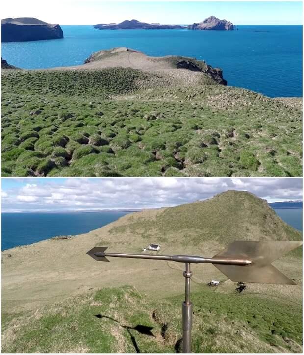 Смельчаков, взобравшихся на плато, встречает флюгер и дикая природа (о.Эдлидаэй, Исландия).   Фото: youtube.com/ © Torz Film.