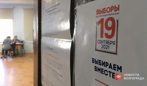 ВВолгограде из-за выборов уроки заменили днями здоровья