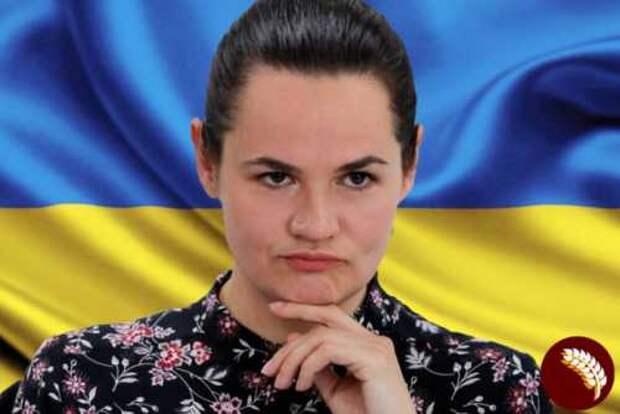 Что ищет белорусская оппозиция на Украине?
