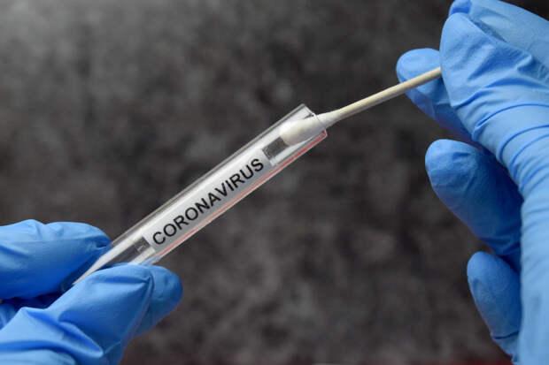 Лаборатории стали отправлять результаты ПЦР-тестов на COVID-19 на Госуслуги