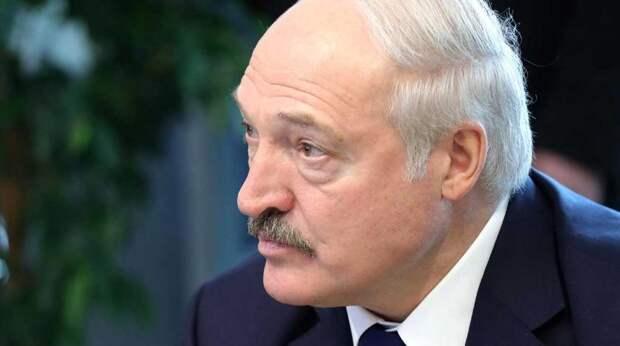 Белорусский ведущий захвалил Лукашенко за отказ от ботокса и бункера
