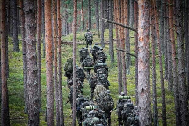 Надежда на гражданское сопротивление и «партизан»: польский обозреватель заявил, что Литва готовится к «возможному нападению» России