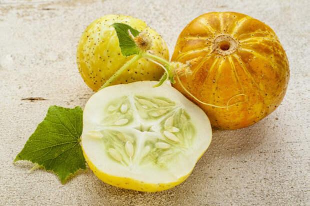 Огурец-лимон – экзотика для вашей грядки!