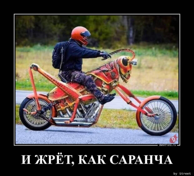 5402287_1613462484_demy13 (640x583, 99Kb)