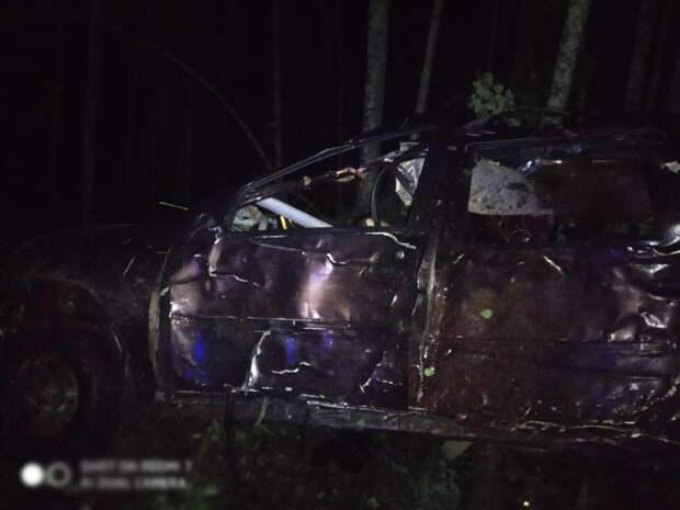 Два человека погибли в аварии с лосем в Удмуртии