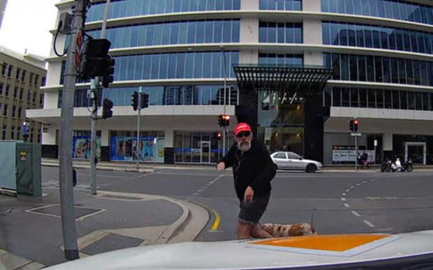 Разгневанный пешеход чуть не убился на ровном месте