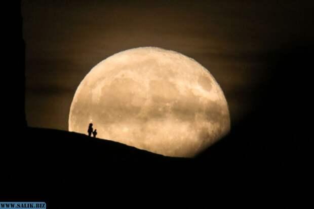 Гипотеза о влиянии фаз Луны на психическое состояние людей не нашла подтверждения