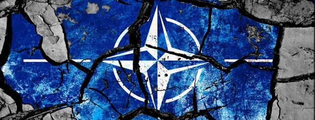 «Вашему миру приходит конец» – сенатор ставит на место генсека НАТО