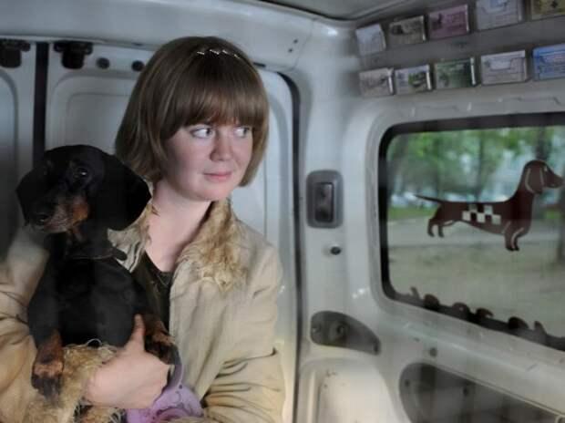 Названы лучшие автомобили для перевозки собак