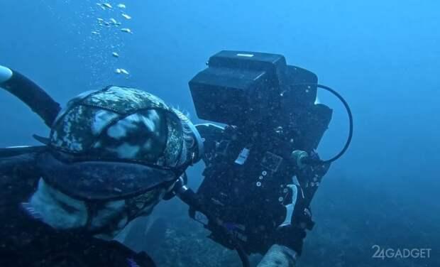 Samsung Galaxy S21 Ultra применили для профессиональной подводной съемки
