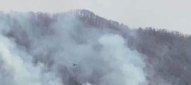 В Сочи ликвидируют два лесных пожара