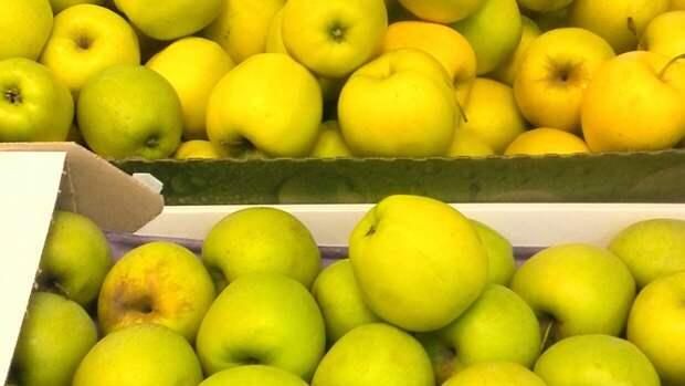 Диетолог Бурляева оценила полезные свойства прошлогодних фруктов и овощей