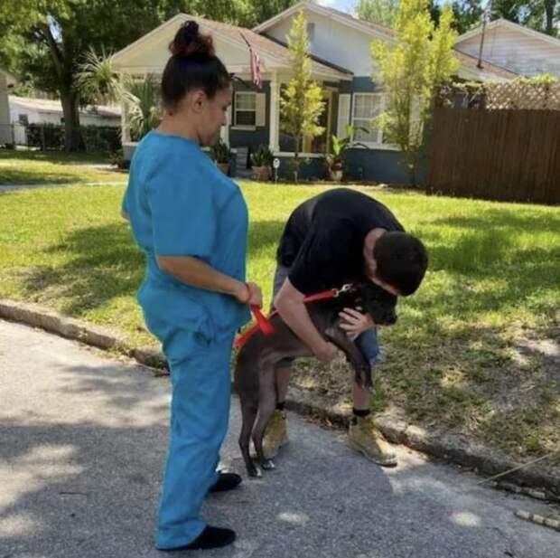 Бездомному пришлось отдать собаку в приют, но он вернул ее