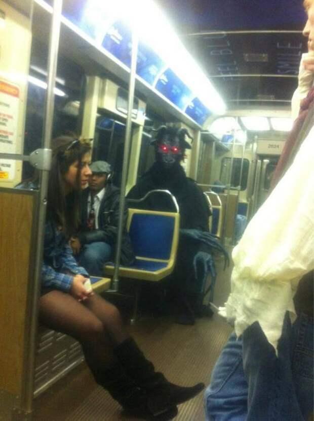 Чего только не увидишь в транспорте: 14 необычных попутчиков