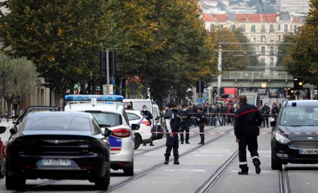 Позиция страуса не поможет Франции в борьбе с терроризмом. Юлия Витязева