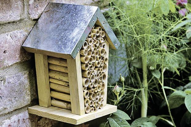 Так может выглядеть домик для букашек.