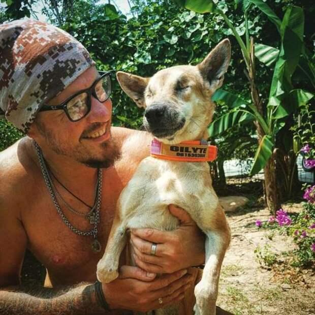 История о том, как мы приютили 18 собак и не смогли на этом остановиться