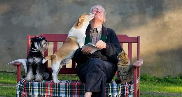 Блог Павла Аксенова. Анекдоты от Пафнутия. Фото budabar - Depositphotos