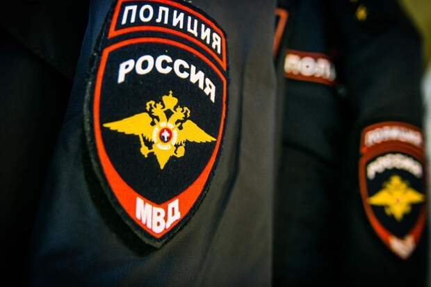 Нелидовские полицейские раскрыли кражу из магазина