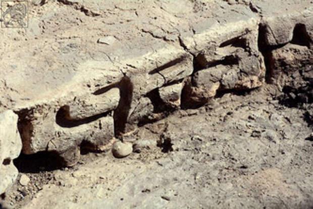 Подтверждена сенсационная находка археологов: «Письменность в Грузии появилась 3000 лет назад»