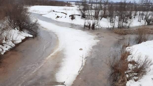 В Глазове спасатели сняли собаку со льдины на реке Сепыч