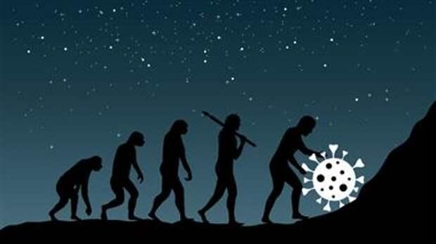 Эволюция коронавируса