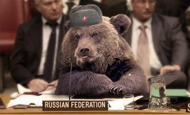 Выпады со стороны Запада в сторону добродушного русского медведя