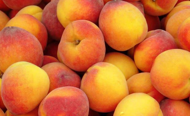 5 продуктов, в которых много витамина С. Смотрим не только на апельсины и лимоны