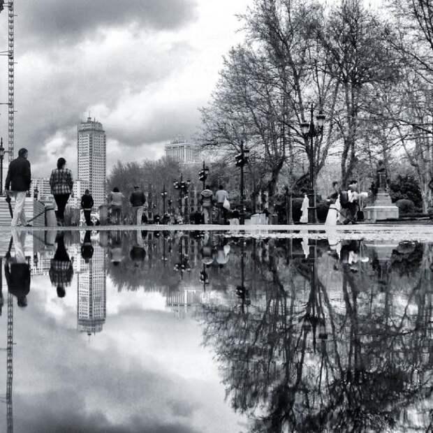 Поразительный мир отражений (15 фото)