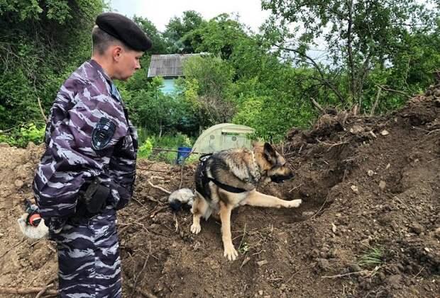В Новороссийске нашли останки советских бойцов и боеприпасы