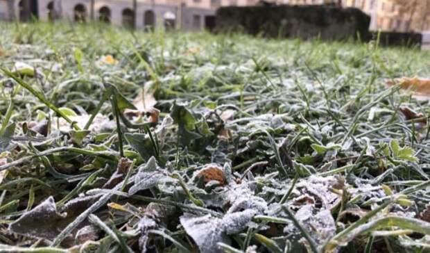 Названы сроки первых заморозков в Москве и области