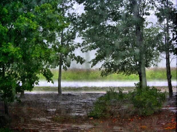 Погода в Крыму — небольшие дожди