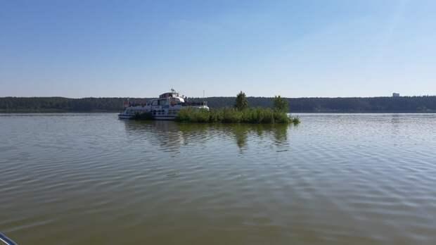 Еще один плавучий остров появился на акватории Ижевского пруда
