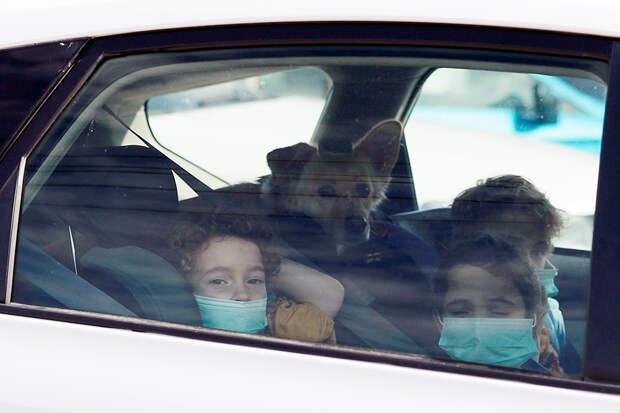В Подмосковье у семьи с ребёнком подтвердили коронавирус