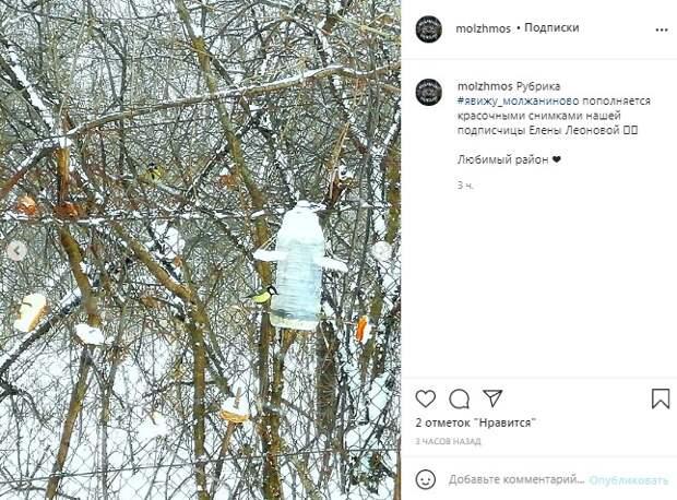 Фото дня: кормушки в Молжаниновском пользуются популярностью