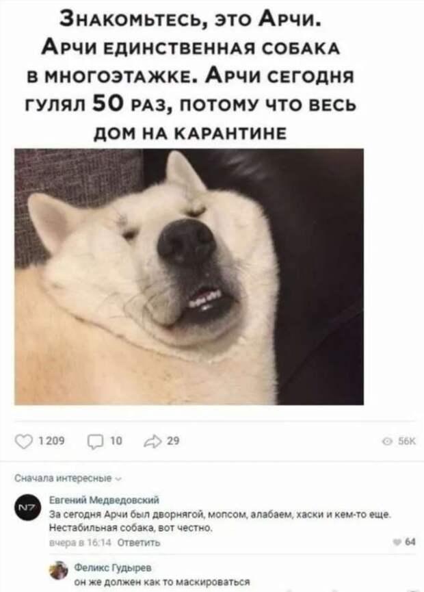 Смешные комментарии. Подборка chert-poberi-kom-chert-poberi-kom-55030703092020-3 картинка chert-poberi-kom-55030703092020-3